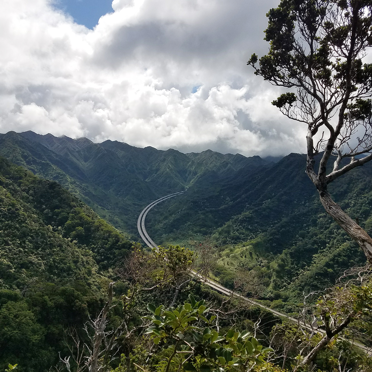 Aiea Loop Trail H3 Outlook