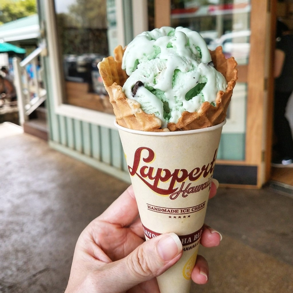 Lapperts Hawaii Mint Chocolate Chip Cone