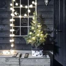 Holiday lights outside