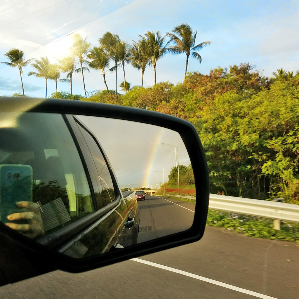 Aloha Lovely Rearview Rainbow